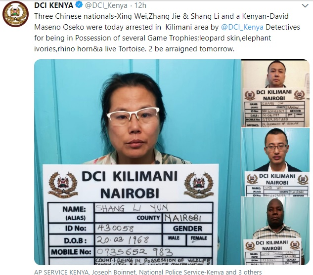Chinese Trophy hunting is becoming a great menace. The DCI Kenya has revealed that the arrested 3 Chinese nationals and 1 Kenyan over the same.