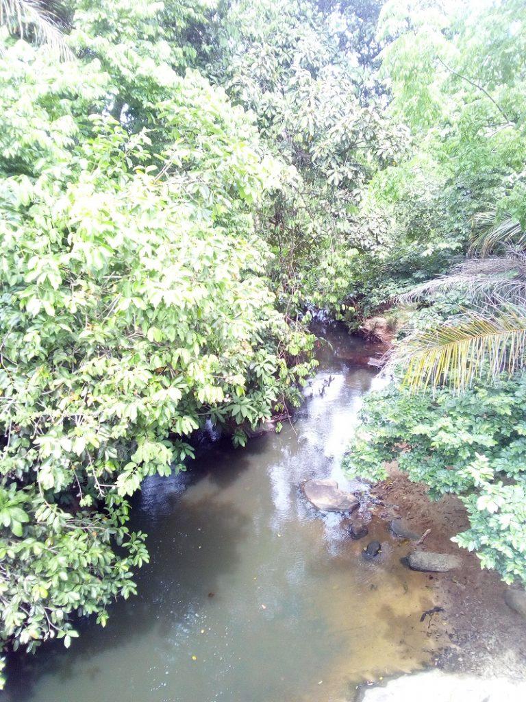 Mkurumudzi river in Kwale County.