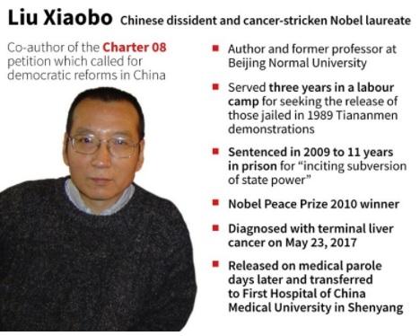 Liu Xiaobo, Nobel laureate and political prisoner died in Custody