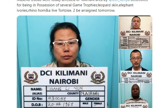 DCI Kenya arrests 3 Chinese and 1 Kenyan over Game Trophy