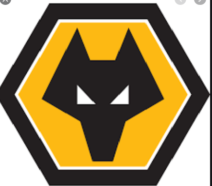 Wolves temporarily ban players from taking selfies amid risk of coronavirus spread