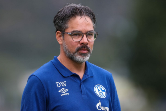 Schalke 04 sack head coach David Wagner