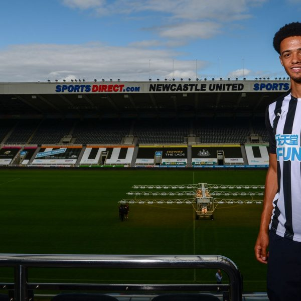 Newcastle sign defender Jamal Lewis from Norwich City