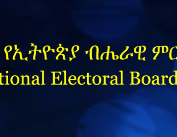 National Election Board of Ethiopia dismisses TPLF as political party